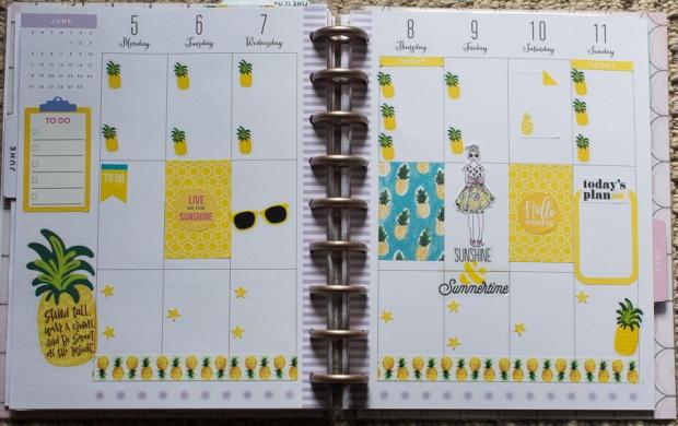 Happy Planner Spread June 5-11
