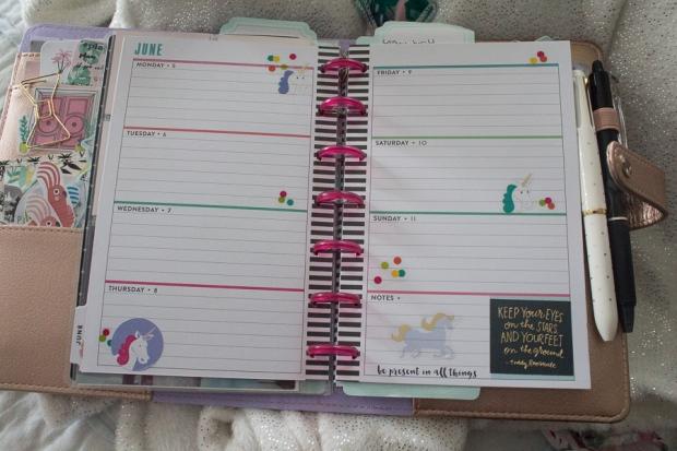 Mini Happy Planner Spread June 5-11