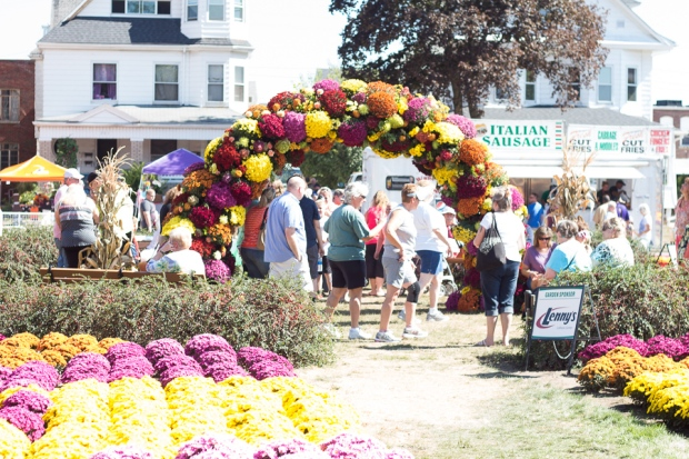 2017 Barberton Mum Festival | JM Creates