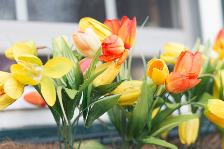 Spring Blooms | JM Creates Blog