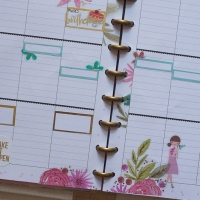 Happy Planner Weekly Spread | July 16-22