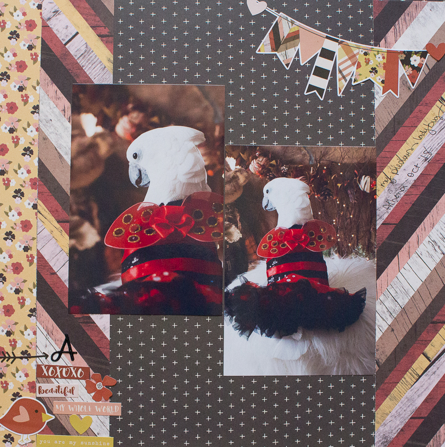 Fall Inspired Scrapbook Layouts | Created by Jen Blog