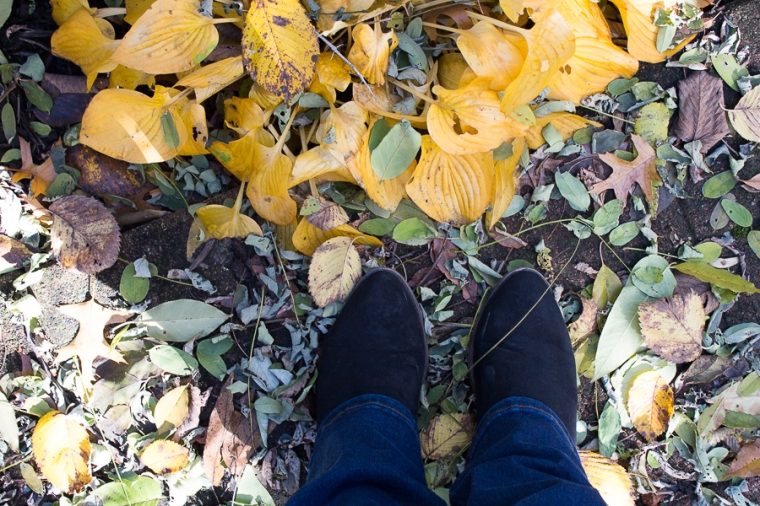Fall 2018 | Created by Jen Blog