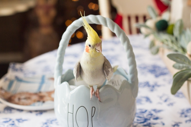 Happy Easter 2020 | Created by Jen Blog